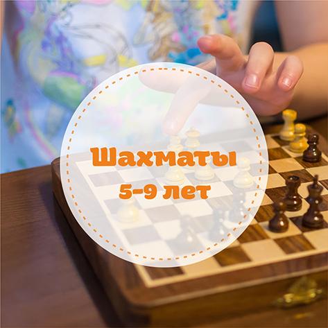 Уроки шахмат для детей Минск Фрунзенский