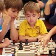 Шахматы кружки